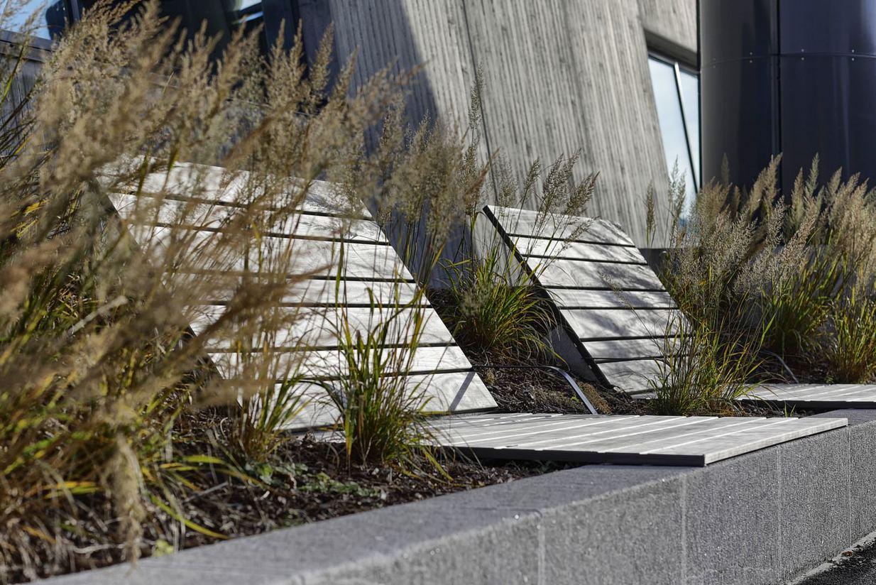 Lettstelte planter som ikke krever mye vedlikehold. Foto: Sindre Ellingsen