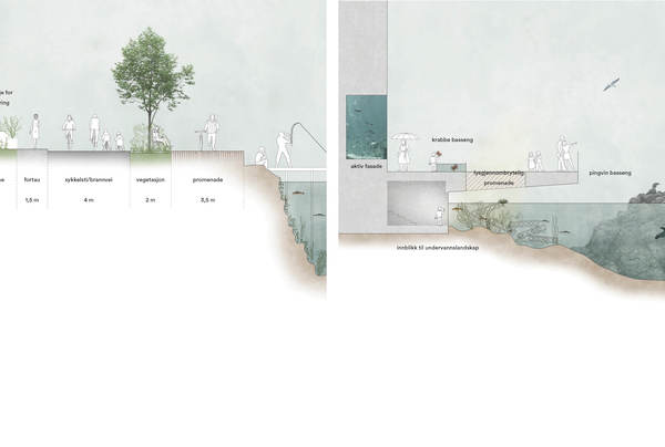 Bilfritt byliv og byrom langs sjøen. Illustrasjon: Asplan Viak og Mad arkitekter