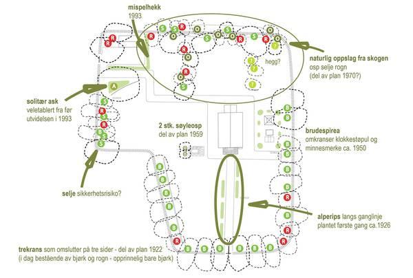Beskrive dagens situasjon, vegetasjon. Illustrasjon: Asplan Viak