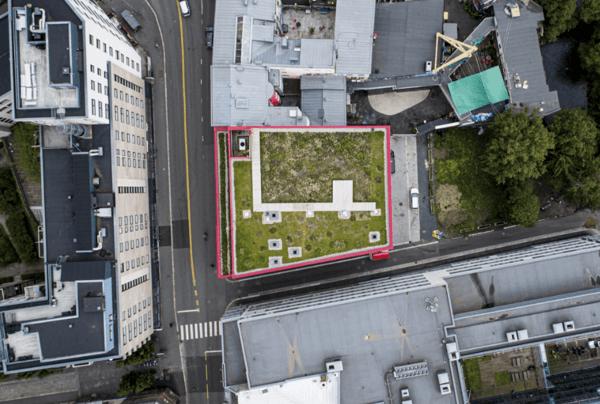 Vega Scene - en grønn oase midt i byen. Foto: Asplan Viaks droneteam